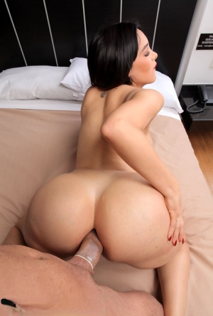 Ass Fuck Shemale Porn Pics